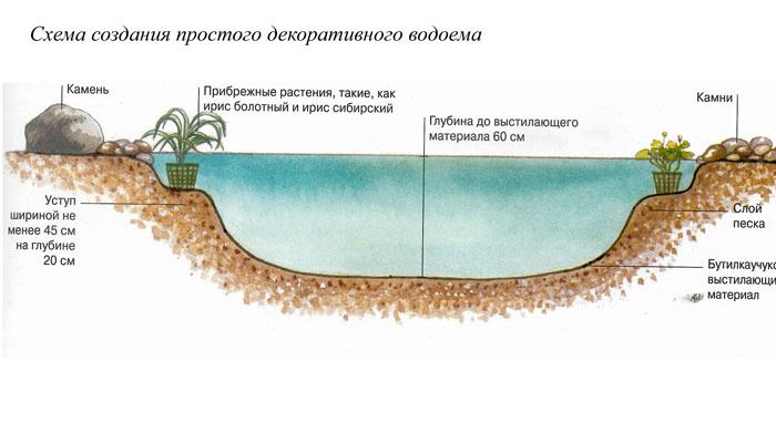 водоема,схему посадки
